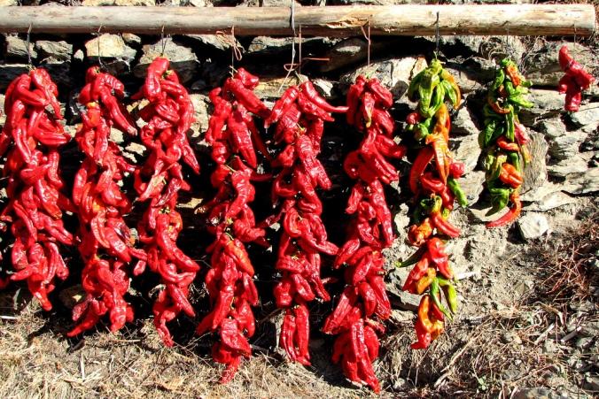 vegetales secándose al sol